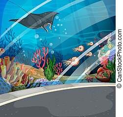Aquarium with stingray swimming  illustration