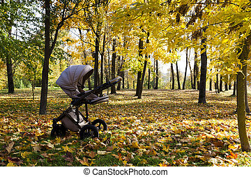 pushchair , autumn season - buggy standing in the forest in...