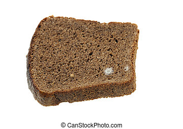 bread mold. close-up - photographed close-up of black bread,...
