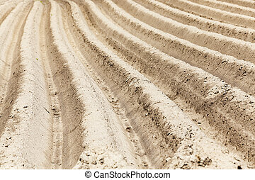 furrow on the field - photographed close up furrows in a...