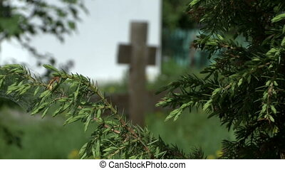 Churchyard. View of graves among lilac bushes - Churchyard....