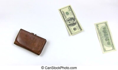 Money concept - Money with purse on white background