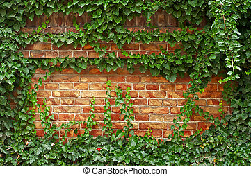Brick Fence Green - Fresh juicy greens on a old red brick...