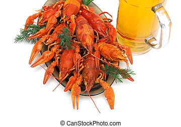 boiled crawfish and beer on a white background horizontal...