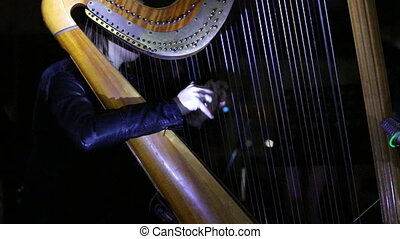 girl playing music on a harp concert