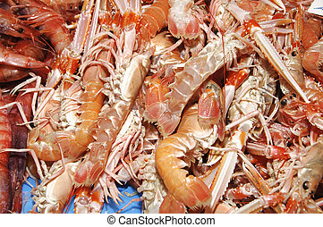 seafood - a pile of shrimps, lobsters and other seafood...