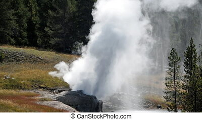 Riverside Geyser Closeup - Closeup view of Riverside Geyser...
