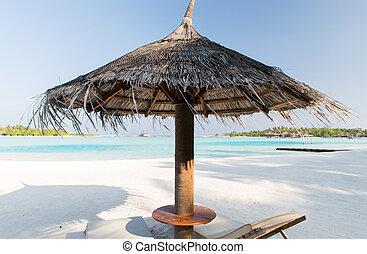 Palapa, y, sunbeds, por, mar, en, maldivas, playa,