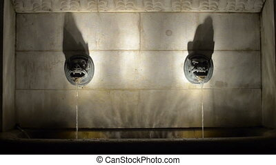Two lion heads in center of old water source at night