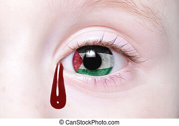 human's eye with national flag of palestine with bloody...