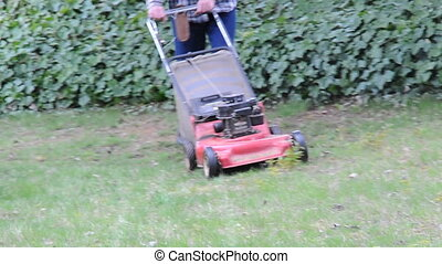 Mowing lawn zoom out
