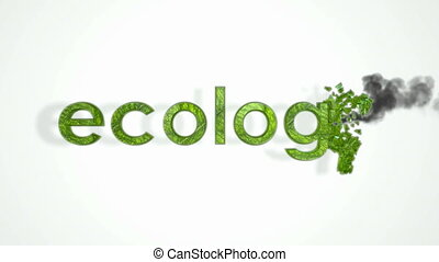 Pollution and environment. Abstract - Ecology, Pollution and...