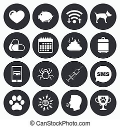 Veterinary, pets icons Dog paw, syringe signs - Wifi,...