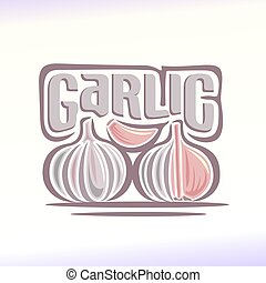 Garlic - Vector illustration on the theme of the logo for...
