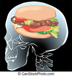 hamburger in the human brain