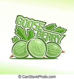 Gooseberry - Vector illustration on the theme of the logo...