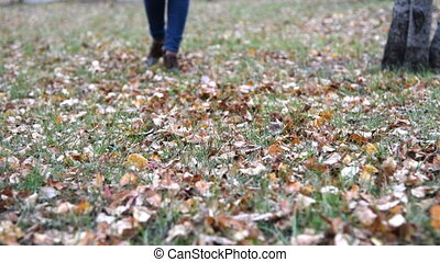 Woman walking on the ground with autumn leaves - Woman...