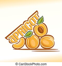 Apricot - Vector illustration on the theme of the logo for...