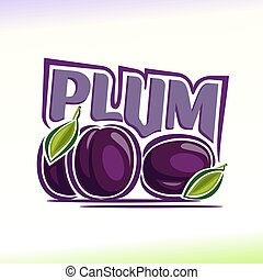 Plum - Vector illustration on the theme of the logo for...