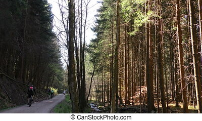 Riding Bike in Forest and Creek