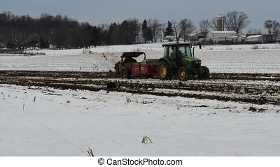 Farmer spreading manure - A farmer spreads manure on his...