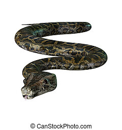 3D Illustration Burmese Python on White - 3D illustration of...