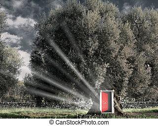 Red open door in the tree - Fantasy Red open door in the...