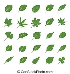 Collection of Green Leafs. Vector Illustration.