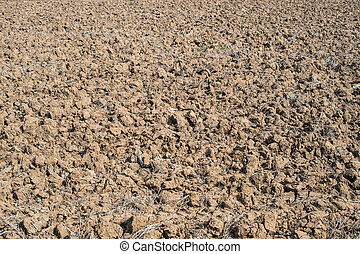background of soil floor for agriculture