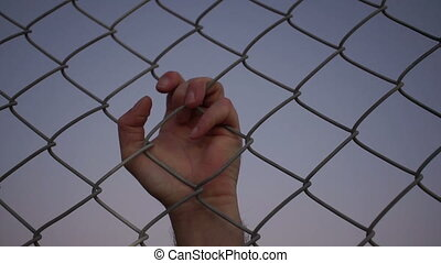 Male Hand Pulling Behind Fence - Closeup evening shot of the...
