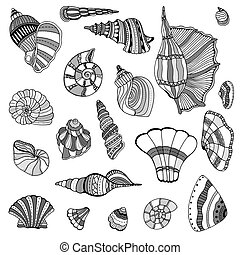 Seashell set collection Vector illustration Zentangle Hand...