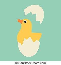 Chicken hatches from the egg. Sweet yellow easter chicken...