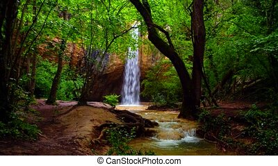 Small Waterfall Falling In Green Forest