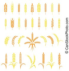 Set of simple and stylish Wheat Ears icons - Set of simple...