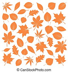 Collection of Orange Leafs Vector Illustration