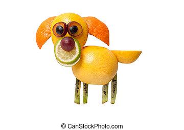 confuso, perro, hecho, de, kiwi, naranja, cal, y, uva,
