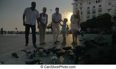 Family and flock of pigeons in the street at sunset -...