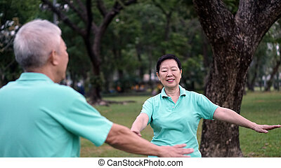 Asian Senior Elderly couple Practice Taichi, Qi Gong...