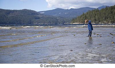 Small boy looking at rocks in ocean