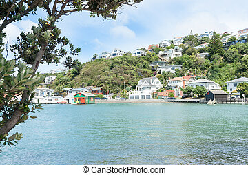 Evans Bay Wellington scenery homes and colourful harbourside...