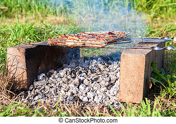 Barbecue with delicious grilled meat on the improvised oven...