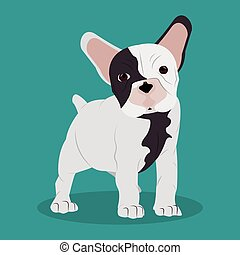French bulldog design , vector illustration - Dog concept...