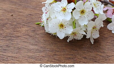 Flowering branch with white delicate flowers on wooden...