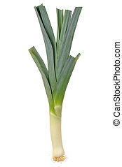 Leek - Leak isolated on white background