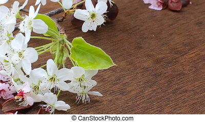 Flowering branch with white delicate