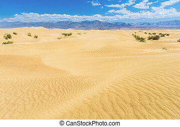 Sand Dunes - Sand dunes in the Death Valley National Park...