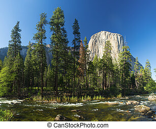 El Capitan - El capitan granite rock seen from the Yosemite...