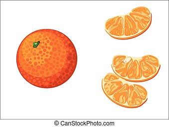 mandarin - Mandarin illustrated isolated on white background...