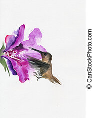 Humming bird with flower - Humming bird hovering beside...