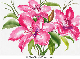 Pink lilies watercolor - Beautiful lily flower watercolor...